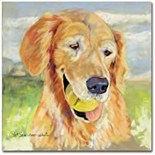 Gus  by Pat Saunders, 14 by 14-Inch Canvas Wall Art