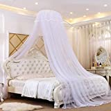ASDFGH Dome Palace Mosquito net, Landing Princess Bed Canopy Kids Mosquito Netting, Keeps Away Insects & Flies Free Installation Home & Travel-White 120x200cm(47x79inch)
