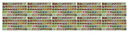 Set of 500 Assorted  Flower Seed Packets! Flower Seeds in Bulk - 20+ Varieties Available! ()