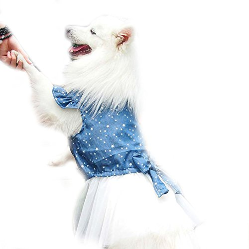 Polka Dot Big large Dog Princess Dress Tutu Skirt Golden Retriever Pitbull Summer Dog Clothes Hoodie Costume (XL, Blue)