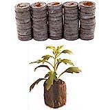 50 Count - Jiffy 7 Peat Pellets - Seed Starter Soil Plugs - 36 mm - Start Seedlings Indoors - Easy to Transplant to Garden