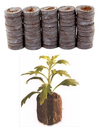 50 Count Pellets Seedlings Transplant product image