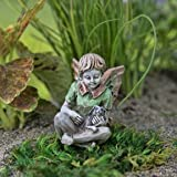 Miniature Fairy Garden Patrick
