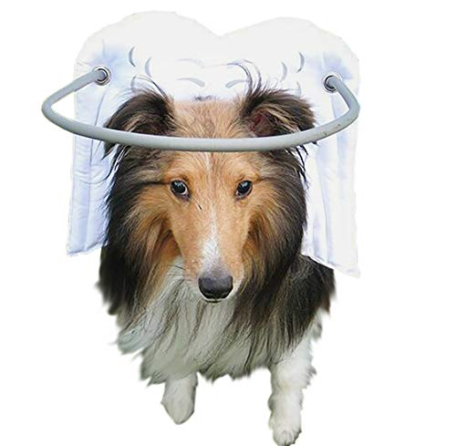Muffin's Halo Blind Dog Harness Guide Device - Help for Blind Dogs or Visually Impaired Pets to Avoid Accidents & Build Confidence - Ideal Blind Dog Accessory to Navigate Surroundings - White- Large (So There Was This Blind Man Right)