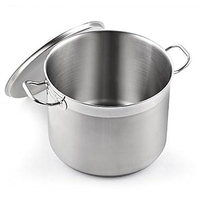 Cooks Standard Professional Grade Stockpot