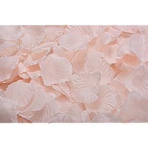 Lorraine Wedding Table Decoration Silk Rose Petals Flowers Confetti (2000, Champagne) 23