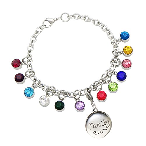 Charm Bracelet Poem Gift Box - Rosemarie Collections Women's Birthstone Heart Charm Bracelet from Your Children (Love/Family)