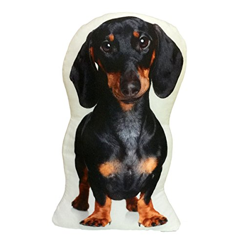 (Dachshund Stuffed Weiner Hot Dog Throw Pillow Decorative Gift)