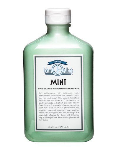 John Allan's Mint Conditioner 12.6 fl. (Invigorating Hydrating Conditioner)