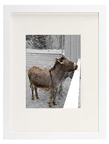 Golden State Art, Simple and Stylish Picture Frame with Ivory Color Mat & Real Glass (12x16, White)