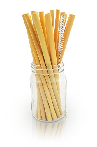 Reusable Bamboo Drinking Straws | BPA Free | Ecological Alternative to Plastic Straws | Strong & Durable Bamboo Multi-Usage Straw |20 Straws | 8.7 Inch | Bambaw