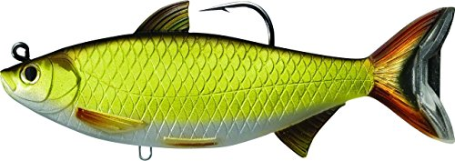 Live target golden shiner swimbait for Target fishing pole