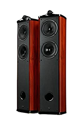 Swans Diva 6.3 F Home Theatre Main Channel, Brown (Pair)