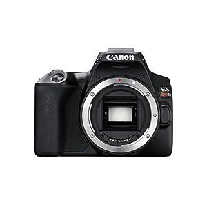 CANON Digital Camera EOS Rebel SL3 (BK) Body