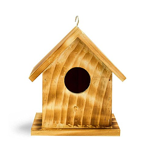 Evergreen Colonial Bird House ()