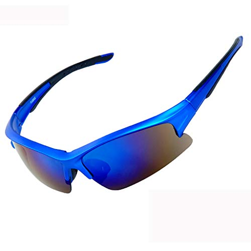 HLSE Cycling Glasses Polarised Sports Sunglasses with 5 Interchangeable Lenses for Mens and Womens Design for Ski Golf Fishing Running Driving Superlight Frame (Blue) (Best Polarised Fishing Glasses)