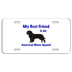 My Best Friend is American Water Spaniel License Plate - Great for Garage Wall Decoration or for Vehicle 1