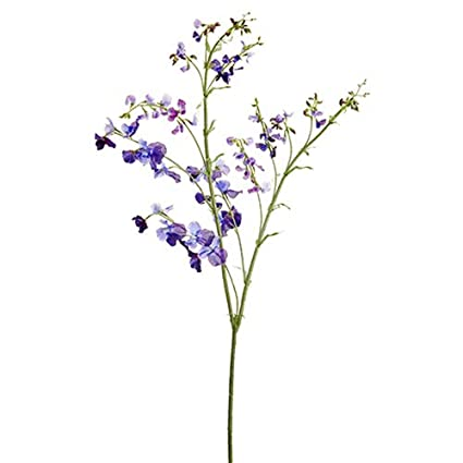 Amazon.com: Flor de seda dulce de 59.1 in, color morado ...