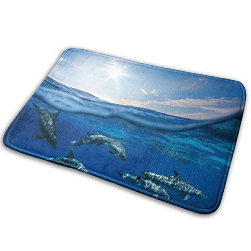 (LNUO-2 Indoor Outdoor Welcome Doormat Hawaiian Sea Animal Dolphin Rug Floor Mats for Entry, Shoe Rugs)