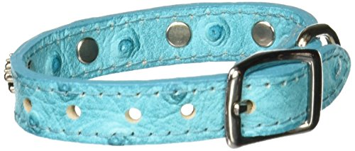 OmniPet Faux Ostrich Signature Leather Dog Collar with Paw Ornaments, Turquoise, 10