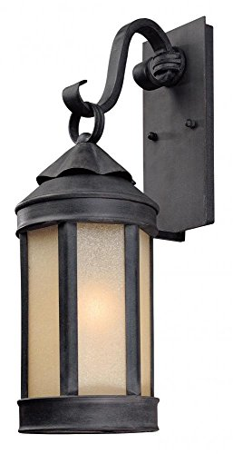 Troy Lighting Andersons Forge 20.75