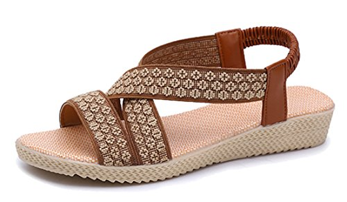 Flat Women's Sandals Roman Simple Femaroly Summer 2712brown Elastic Sandals Solid wpI1TxTP