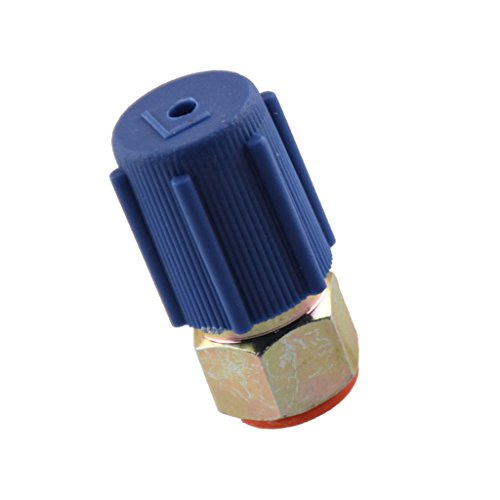 Service Port Fitting (Dovewill R-12 to R-134a Retrofit Conversion Adapter Fitting 1/4