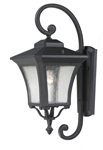 Z-Lite 535M-BK Waterdown Outdoor Wall Light, Aluminum Frame, Sand Black Finish and Clear Seedy Shade of Glass Material
