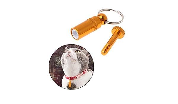 Deendeng Collar de Gato Personalizado Anti pérdida de Metal ...