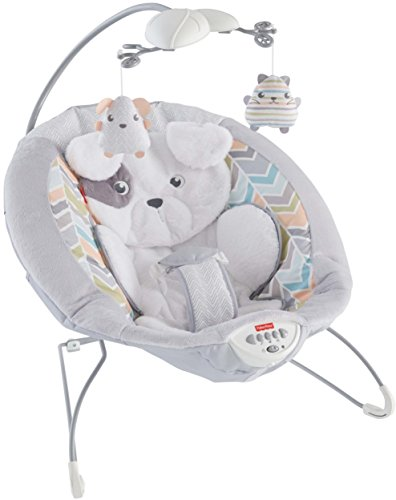 Fisher-Price Deluxe Bouncer: Sweet Dreams Snugapuppy (Fisher Price Infant To Toddler Rocker Reviews)