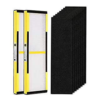 isinlive 2 Pack FLT4825 True HEPA Filter B Replacement with Activated Carbon Pre-Filters Compatible GermGuardian Air Purifier AC4825 AC4300 AC4800 AC4900 AC4850
