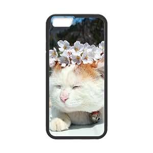 Cat Series, IPhone 6 Plus Cases, Cat Tert Cases for IPhone 6 Plus [Black]