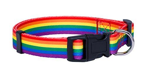 (Native Pup Rainbow Flag Dog Collar (Large))