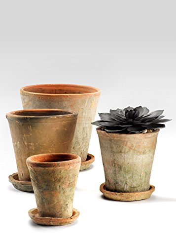 Serene Spaces Living Mossed Redstone Clay Pot and Saucer, Small Size - Perfect for Houseplants and Herbs, Multiple Sizes Available