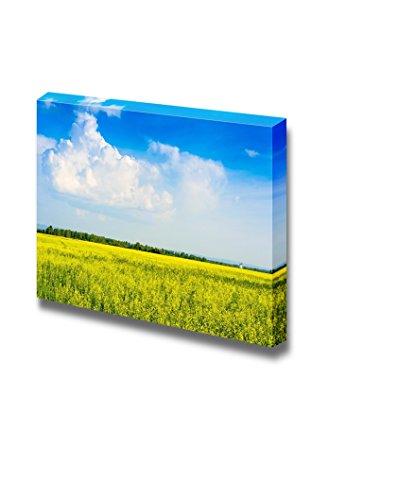Peaceful Summer Rural Landscape in Wide Field Wall Decor ation