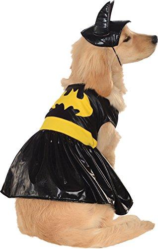 Hallo (Small Dog Bat Costume)