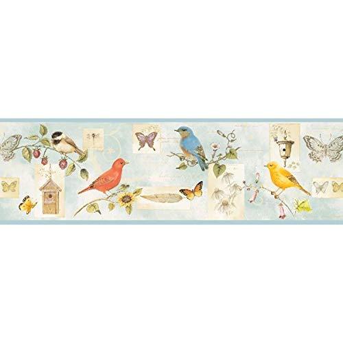 Songbird Birds Collage Wallpaper Border - Blue - Butterflies, Bluebirds, Flowers