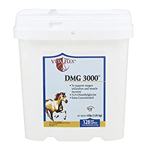 Vita Flex DMG 3000 Concentrate, 128 Day Supply, 4 lbs 3