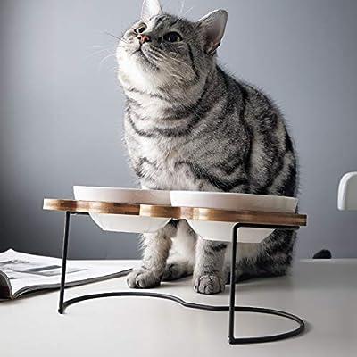 XXDYF Doble Comederos Perros Gatos, Elevado Cuenco de Cerámica para Gato, Inclinación Comedero para Proteger la Columna Vertebral del Cuello para Gatos: Amazon.es: Deportes y aire libre