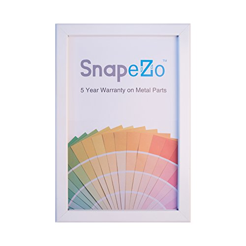 White Snap Frame 16x20 Inches, 1.25' SnapeZo Profile, Front Loading Quick Poster Change, Wall Mounted, Professional Series