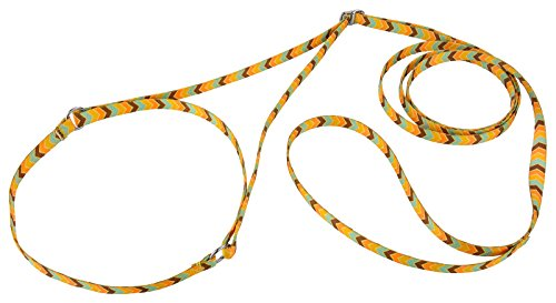 Country Brook Design Harvest Chevron Martingale Dog Show Lead