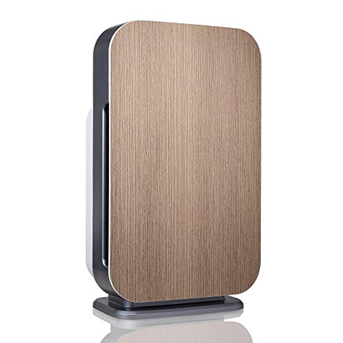 Alen BreatheSmart FLEX Air Purifier for Bedrooms and Offices, 700 Sqft. Coverage Area, True HEPA Filter for Allergies, Pollen, Dust, Dander and Fur in Weathered Gray