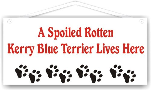(A Spoiled Rotten Kerry Blue Terrier Lives Here)
