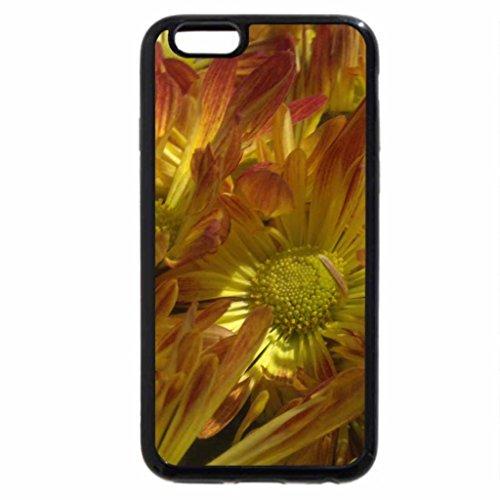 iPhone 6S / iPhone 6 Case (Black) Autumn Mums