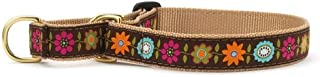 product image for Up Country Bella Floral Martingale Dog Collar - Medium (12.5-20 Inches) - 1 in Width