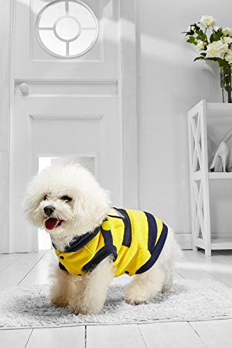 Bee Costume Bumble Dog Small (Small Dog Bumble Bee Coat With Hood For Bichon Frise Dachshund Mini Schnauzer (Small Size, yellow, dark)