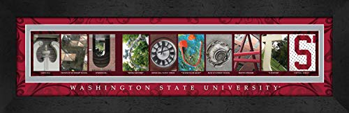 College Campus Letter Art Washington State WSU Cougars Bold Print Framed Posters 22x6 Inches