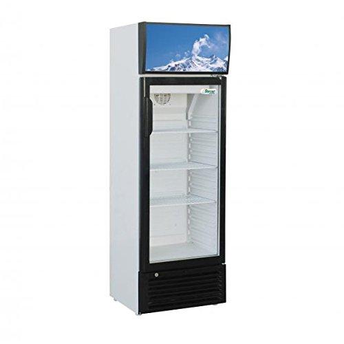 Nevera vitrina a columna 250 LT. - Armario Refrigerato: Amazon.es ...