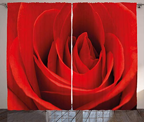 (Ambesonne Rose Curtains, Close Up of a Red Rose Bloom Fresh Natural Beauty Love Valentine's Day Couples Theme, Living Room Bedroom Window Drapes 2 Panel Set, 108 W X 96 L Inches, Vermilion)