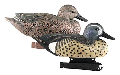 (Avery Greenhead Gear Life-Size Duck Decoy,Blue-Winged Teal,1/2 Dozen)